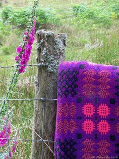 Violet & Foxglove Caernafon tapestry bedcover TBV23 - Tapestry Bed Covers Vintage Welsh Blankets