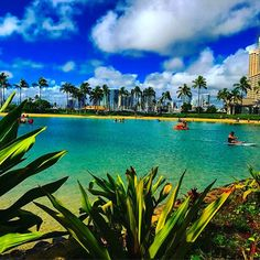 【acky.727272】さんのInstagramをピンしています。 《過去pic🌴  今日も頑張ろう(* ´ ェ `*)♥ Do your best today, too.  #hawaii#happy#hiltonhawaiianvillage  #hiltonhawaii#beach#sunnyday#sea#ocean #palmtrees #anothersky #powerspot#oahu #waikiki#honolulu#nice#nicepic#sky #ハワイ#ラブ#love#ハワイの想い出 #妄想ハワイ#やっぱハワイ#instabeach#海 #surf#surfin#オアフ島#island#天国》