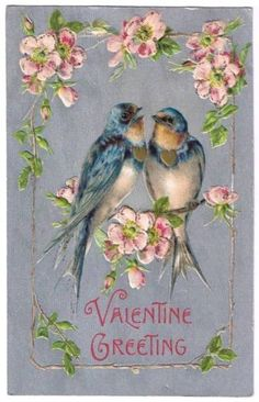 ♥ Vintage Valentine's Day card. Two blue birds and cherry blossoms