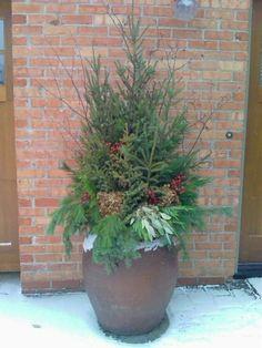 Spruce Tip Pots | Minnesota. Make the spruce tip arrangement in soil in a drop in pot ...