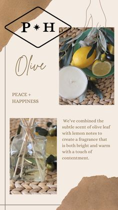Olive: A traditional symbol of peace, this scent is the perfect backdrop to inspire tranquility in your space. We've combined the subtle scent of olive leaf with lemon notes to create a fragrance that is both bright and warm with a touch of contentment. . #cleaninghome #cleaningtips #cleanhome #greenclean #housecleaning #homekeeping #cleaning #homemaking #springcleaning #springclean #deepclean #cleaningday #timetoclean Cleaning Day, Green Cleaning, Spring Cleaning, Cleaning Hacks, Peaceful Home, Homekeeping, Contentment, Home Fragrances, Homemaking