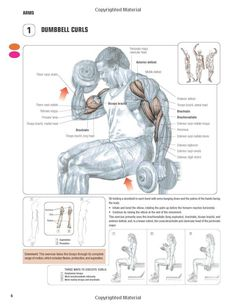 Strength Training Anatomy-3rd Edition: ~ Repinned by Crossed Irons Fitness