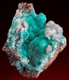 Fine needle-like sprays of Aurichalchite with very light sky blue Hemimorphite, from '79 Mine, Gila County, Arizona, USA