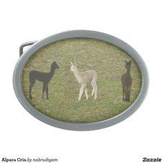 Alpaca Cria Oval Belt Buckles