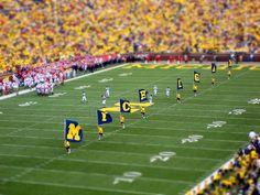 Flyin the flags Michigan Athletics, Michigan Wolverines Football, University Of Michigan, College Fun, College Football, Football Fans, Football Season, Michigan Go Blue, The Sporting Life