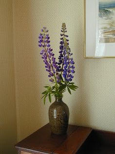 Lupines from the lupine patch at Riverdragon Ceramics, displayed in a dragon vase made by Riverdragon Ceramics! 2012.
