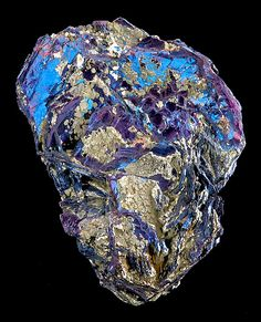 ggeology:    Covellite with accenting Pyrite crystals //  Calabona Mine, Alghero, Sardinia, Italy