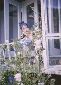 Photo album containing 66 pictures of IU Snsd, Cosmic Girls, K Idol, Love Poems, Kpop Aesthetic, Korean Singer, Alter, Mini Albums, Kpop Girls