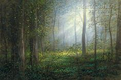 Sacred Grove by Jon McNaughton - 10 Framed & Unframed Options Lds Pictures, Jesus Pictures, Room Pictures, Jon Mcnaughton, Sacred Groves, Forest Grove, Vision Art, Litho Print, Religious Paintings