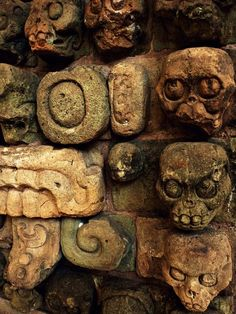 ancientart:  Ancient Mayan skull carvings from Copan. Courtesy & currently located at the Museo Regional de Arqueología Maya, Honduras. Photo taken by Recovering Vagabond