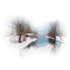 downloads_paysages_1250147461_paysages.png ❤ liked on Polyvore featuring winter, christmas, backgrounds and xmas