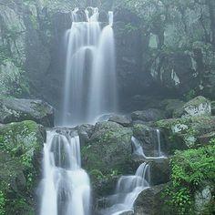 Shenandoah National Park waterfall from Crystal Hull  #boomer #travel #Virginia