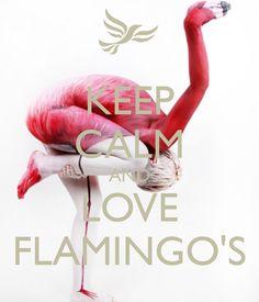 KEEP CALM AND LOVE FLAMINGO'S