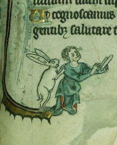Demonagerie: Walters Art museum, W. 82. Flemish psalter, 1310-1325.