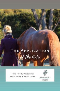 In physical terms, there is no such thing as a universally understood or applied aid; there is only the aid that you have taught your horse to understand. >> Confident Rider - mindset, movement and nervous system awareness for equestrians Horseback Riding Lessons, Emotional Resilience, Horse Riding Tips, Training Tips, Nervous System, Confident, Equestrian, Mindset, Physics