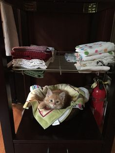 """""""Remember that even superheroes have bad days and have to go out in a smelly shirt because they forgot to do laundry."""" 