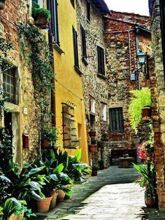 Toscana - Lucignano, Valdichiana (Arezzo)
