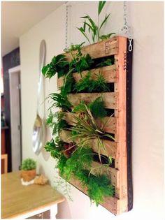 ECO-IDEAS Y RECICLAJE : Plantas en pallets.
