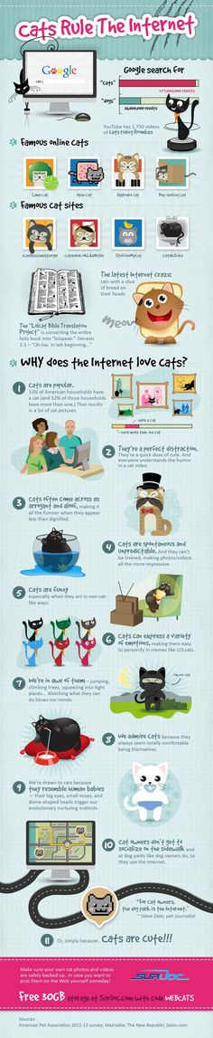 Cats Rule the Internet infographic-- This is a cute info graphic on why cats rule the internet. Now, cat lovers know they rule because cats are just so darn cute (that's from the lips of a lover of 5 cats!) but this chart goes into detail further why they rule