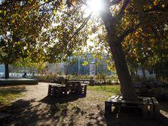 Karls Garten im Herbst Karls Garden in Autumn