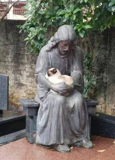 Cat naps with Jesus statue.