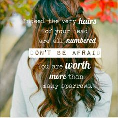 Indeed, the very hairs on your are all numbered, don't be afraid, you are worth more than many sparrow. Luke 12:7