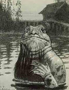 Os vodyanoi são seres (ou espíritos) masculinos hostis que vivem no fundo de lagos. São descritos como rãs do tamanho de focas com face humana ou como homens envelhecidos com barba esverdeada, cabelo comprido e ralo, corpo coberto de limo, algas e escamas negras, patas membranosas no lugar de mãos, cauda de peixe e olhos que queimam como carvões em brasa.