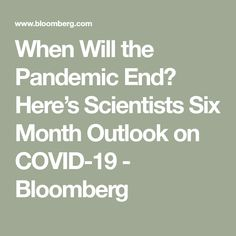 When Will the Pandemic End? Here's Scientists Six Month Outlook on COVID-19 - Bloomberg Six Month, News Articles, Scientists