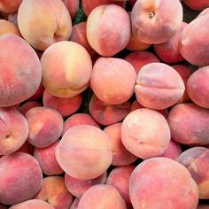 'Summers Candy' by PastRemembered Peach Fruit, Peach Aesthetic, Just Peachy, Best Fruits, Prunus, Headers, Scented Candles, Aesthetic Pictures, Pink Color