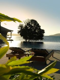 Qualia Resort, Great Barrier Reef Australia hotel hotels and restaurants Hamilton Island, Best Resorts, Island Resort, Garden Pool, Interior Exterior, Luxury Interior, Interior Design, Great Barrier Reef, Commonwealth