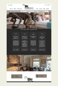 Darwin's Townhouse - Brand Identity & Photography In Shropshire Website Menu, Stunning Photography, Black And White Illustration, Darwin, Bed And Breakfast, Brand Identity, Townhouse, This Is Us, Design