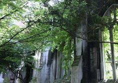 St Dunstan in the East ruins and garden and stuff