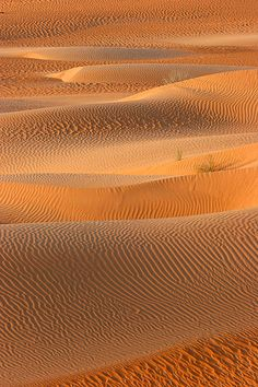Textures and Patterns, a photo from Hadramawt, East | TrekEarth