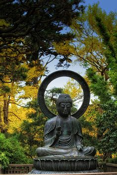 Large Bronze Buddha At The Japanese Tea Garden At Golden Gate Park, San  Francisco,