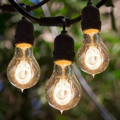 Edison firefly 10 bulb battery operated string lights fireflies bulbrite string15e26 a19kt 48 ft outdoor string light with vintage edison bulbs mozeypictures Image collections