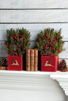 I think I could make something similar with wood tissue boxes and reindeer appliques