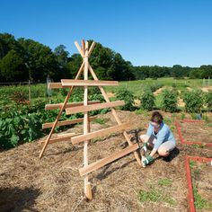 Simple Squash Trellis - Save space (and your back) in the garden without sacrificing a single squash! I am going to do this with watermelon and cantaloupe to see if the trellises can hold up! We will see what happens! 8/9/12