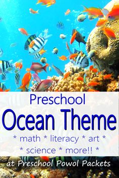 21+ ocean theme activities for preschool! Math, science, literacy, free printables, and more!! Sharks, fish, sand, and more!!