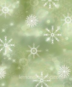 LemonDrop Stop Snow Flakes and Bokeh Green | PolyPaper Photography Backdrops | LemonDrop Stop Photography Backdrops and FloorDrops