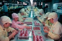 Chinese Factory Workers & the Toys They Make by Michael Wolf