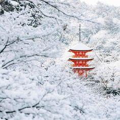 15 fotos que muestran cómo Kioto se convierte en una ciudad de ensueño con la nieve