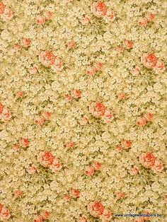 Vintage Wallpapers (166)  By www.cityzine.be