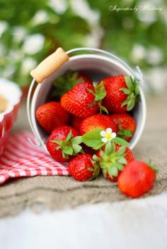 Strawberries are my favorite fruit! Strawberry Kitchen, Strawberry Farm, Strawberry Delight, Strawberry Patch, Strawberry Cakes, Strawberry Recipes, Strawberry Shortcake, Strawberry Fields, Red Fruit