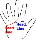 Simian Line with heart energy according to palm reading and palmistry