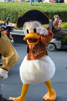 Donald Duck ~ Pirate