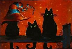 Bewitching black cats