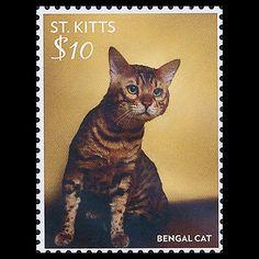 16-1_st-kitts.jpg (420×420)