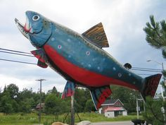 This year, I'm proud to present a Dominion Day photacular. From our bulging collection of Canadian roadside attractions. Dominion Day, Ontario, Sault Ste Marie, Jack Of Hearts, O Canada, Roadside Attractions, Lake Superior, Fly Fishing, Walleye Fishing