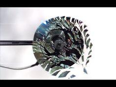 [Vídeo] - Esses 2 giraram um CD tão rápido que ISSO aconteceu. Você vai ficar impressionado! - Curingo