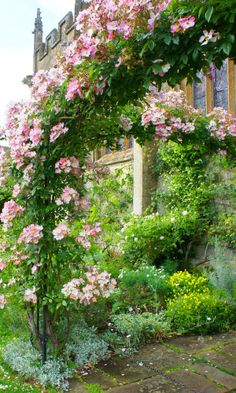 Beautiful garden arch covered with roses.